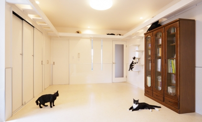 光と風と雪の回廊/12匹の猫と、風を感じる2世帯住宅