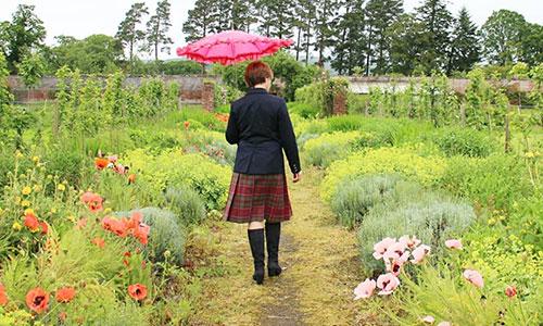 [銀座]お茶旅講座 第20回「お茶で巡るスコットランド紀行」【会場は満席】