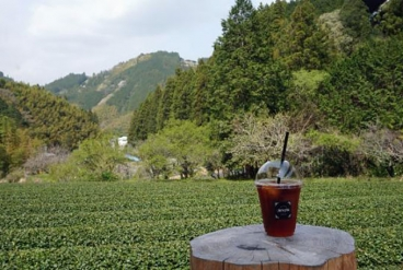 [銀座] 【 お茶旅講座第22回 日本の紅茶文化を学ぶ~和紅茶のふるさとを訪ねて 】