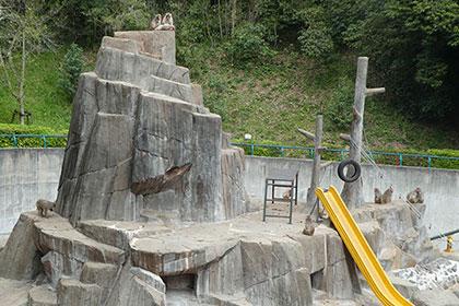 🌸桜の咲く「福岡市動物園」へ行ってきました🐻