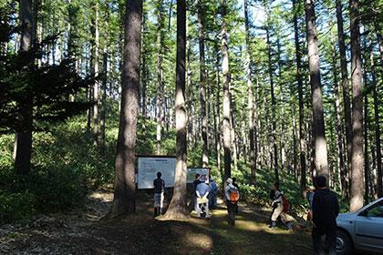 北海道自伐型林業推進協議会