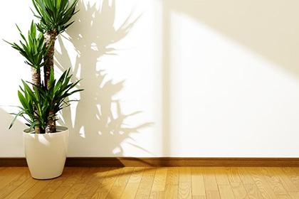 札幌でリフォーム 自然の光を採り入れてみる①